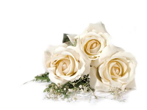Matrimonio sposarsi a San Valentino a Verona